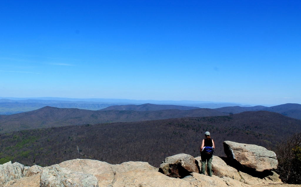 ... visiting shenandoah national park i saw a bumper sticker with the